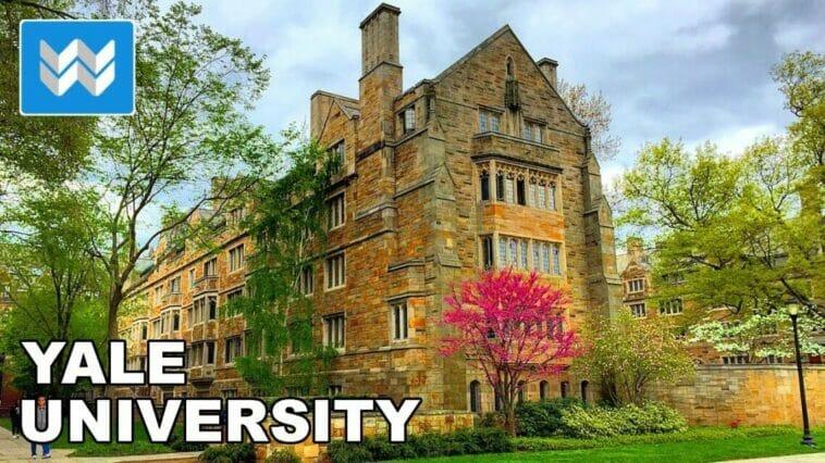Yale University Scholarships In USA