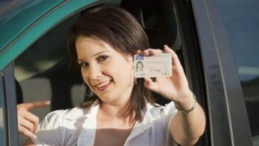 New Brunswick drivers licence